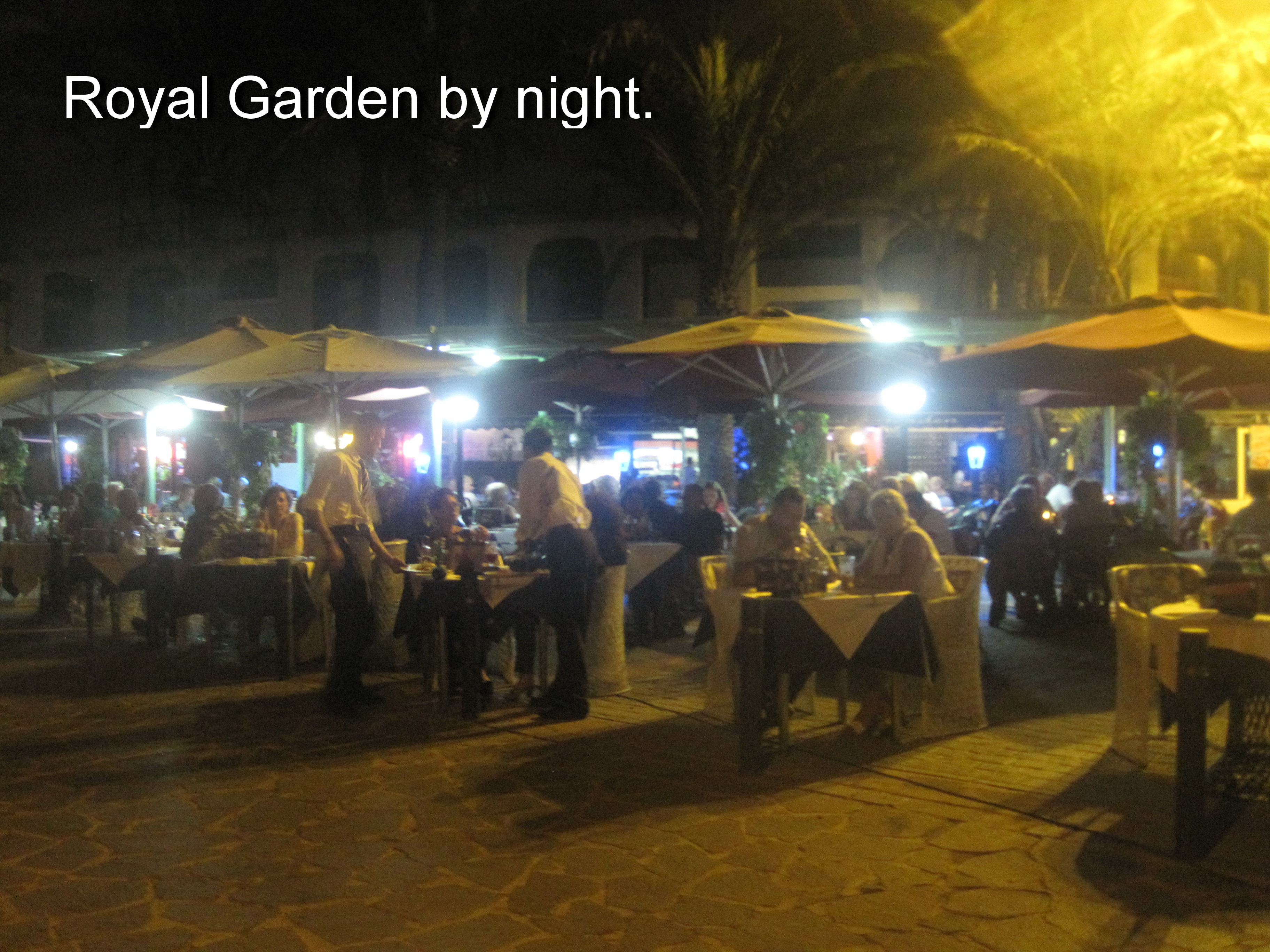 Royl Garden by night.