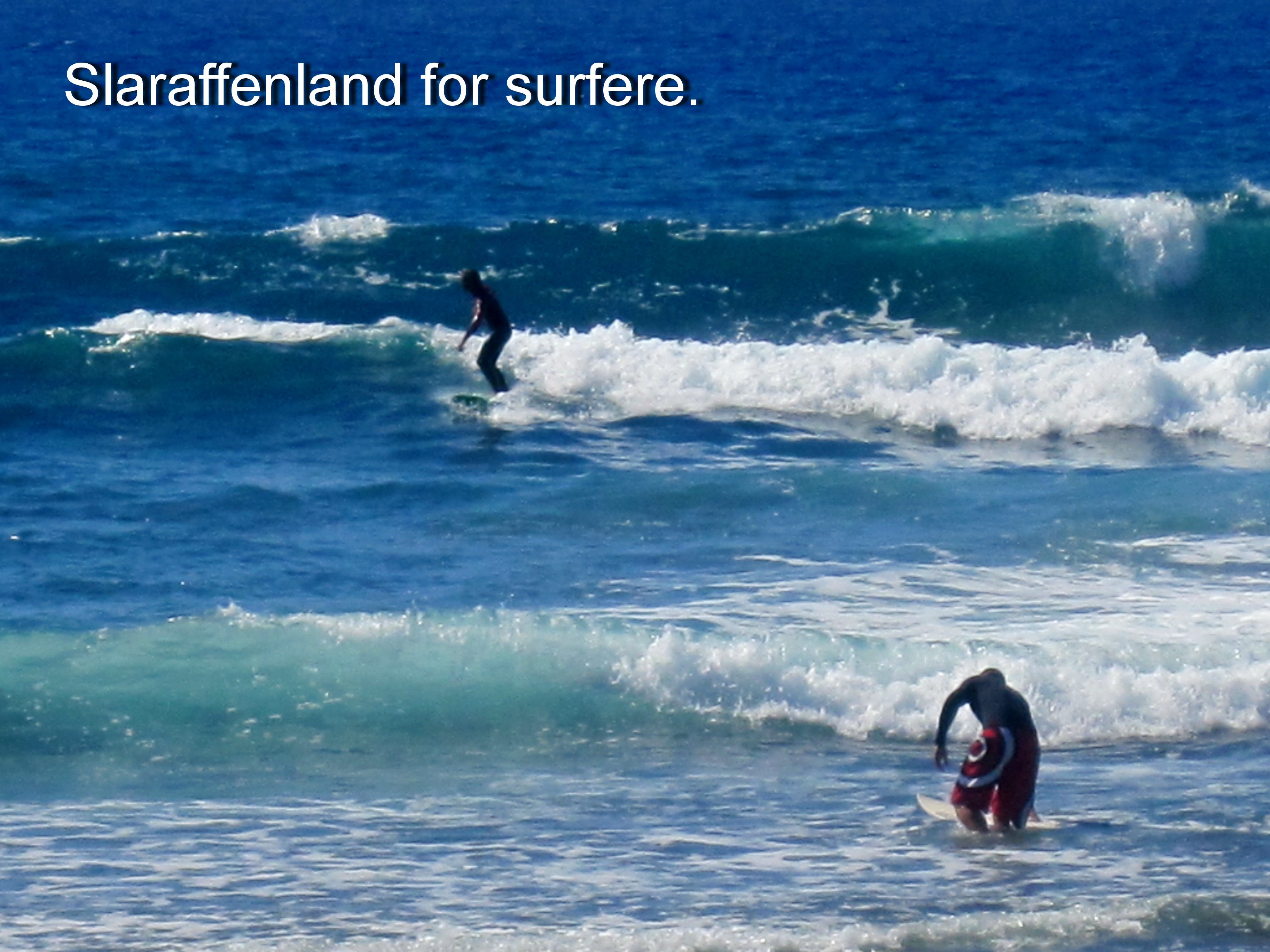 Surfere 1