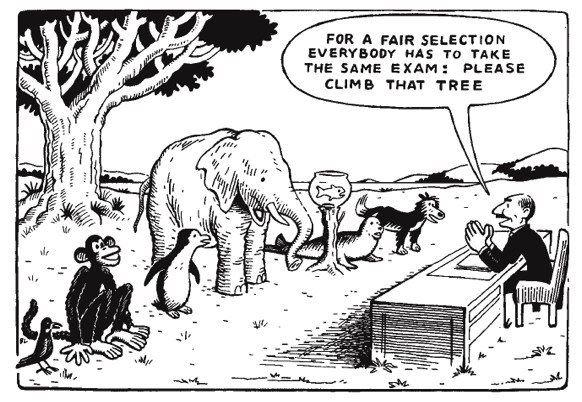 Skoleeksamen